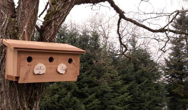 Vogelhaus aus Thermofichte